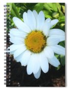 Single Daisy Spiral Notebook