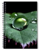 Single Drop Spiral Notebook