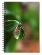 Single Drop Of Rain Water  Spiral Notebook