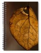 Single Fall Leaf Spiral Notebook