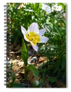 Single Flower - Simplify Series Spiral Notebook