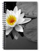 Single Lily Spiral Notebook