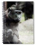 Single Macaque Monkey Sitting Spiral Notebook