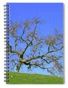 Single Oak Tree Spiral Notebook