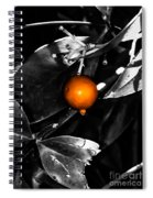 Single Orange Berry Spiral Notebook