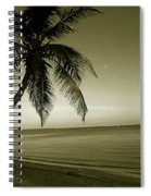 Single Palm At The Beach Spiral Notebook