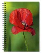 Single Poppy On Green Background Spiral Notebook