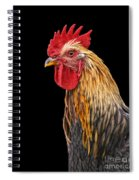 Single Rooster Spiral Notebook