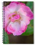 Single Rose 2 Spiral Notebook
