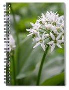 Single Stem Of Wild Garlic Spiral Notebook