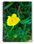 Single Yellow Buttercup Spiral Notebook