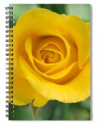 Single Yellow Rose Spiral Notebook
