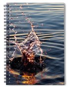 Sink And Surge Spiral Notebook