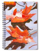 Sinking Feeling Spiral Notebook