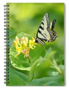 Sipping Swallowtail Spiral Notebook