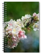 Sitting Guard In The Cherry Blossoms Spiral Notebook