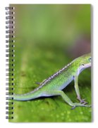 Sitting Pretty Spiral Notebook