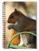 Sitting Squirrel Spiral Notebook