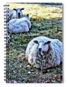 Sitting There Spiral Notebook