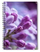 Six Petals Double Happiness Spiral Notebook