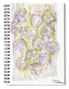 Size Exclusion Chromatography Spiral Notebook