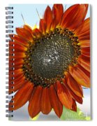 Sizzling Hot Sun Flower Spiral Notebook