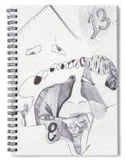Sjb-28 Spiral Notebook