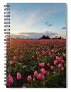 Skagit Sunset Field Spiral Notebook