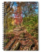 Skeleton Of Graveyard Fields Spiral Notebook