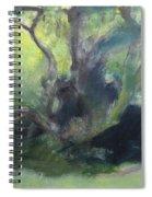 Sketch Of A Shady Glade. Spiral Notebook