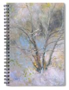 Sketch Of Halation Effect Through Trees Spiral Notebook