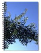 Skies Grass  Spiral Notebook