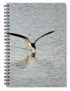Skimmer Skimming Spiral Notebook