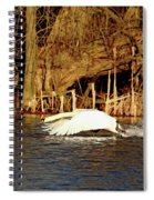 Skimming The Water Spiral Notebook