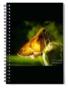 Skipper Butterfly Basking In Sun Spiral Notebook