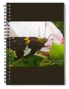 Skipper  Spiral Notebook