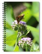 Skipper On Purple Fiddleneck Spiral Notebook