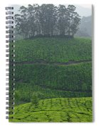 Skn 6550 From Tea's Perspective. Color Spiral Notebook