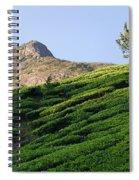 Skn 6662. Dominating. Color Spiral Notebook