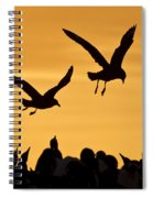 Skuas And Penguins Spiral Notebook
