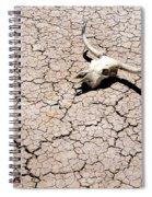 Skull In Desert 2 Spiral Notebook