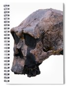 Skull Of Homo Erectus Spiral Notebook