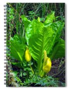 Skunk Cabbage In Bloom Spiral Notebook