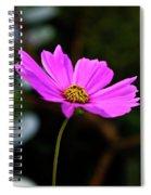 Sky Facing Flower Spiral Notebook