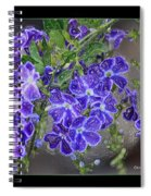 Sky Flower Window  Spiral Notebook