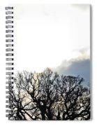 Sky Lights Spiral Notebook