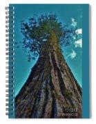 Sky Reacher Spiral Notebook