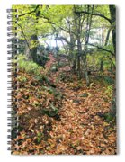 Skylands Path P Spiral Notebook