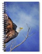 Skyward - Bald Eagle Spiral Notebook