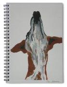 Skyward Bound Spiral Notebook